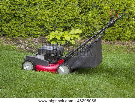 Lawnmower On Grass Yard