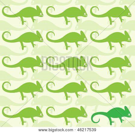 Wallpaper images of chameleon