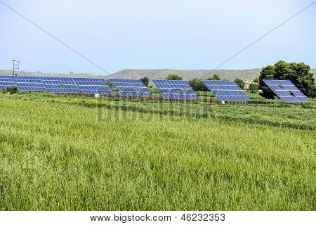 Photovoltaic Panels In Green Field