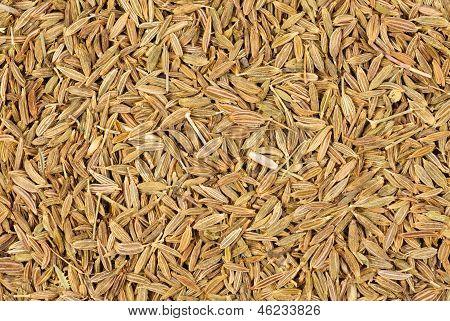 Cumin Seeds Baqckground
