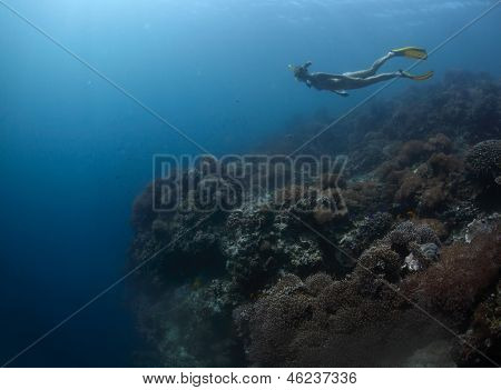 Young lady freediver finning over coral reef towards underwater abyss