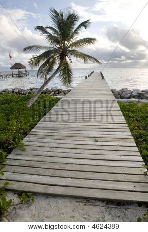 Pier And Palm Tree At Sunrise