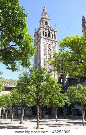 Catedral y el campanario de la Giralda de Sevilla, España