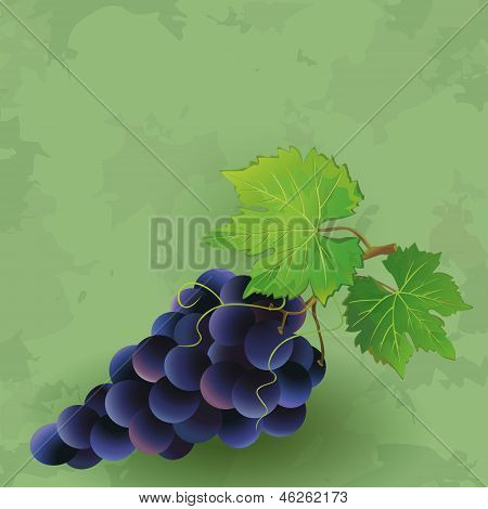Vintage Background With Black Grape