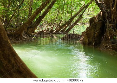 River in tropical forest near the Umphang Thi Lo Su Waterfall.  Tak Province in northwestern Thailand.