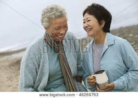 Two cheerful middle aged female friends talking on the beach