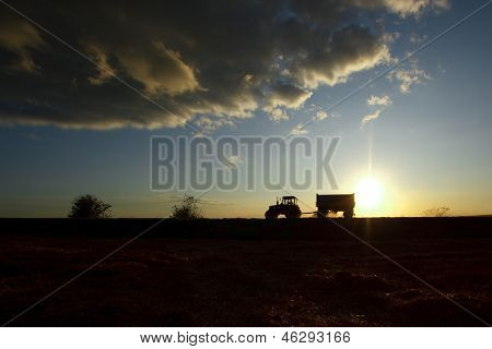 Summer landscape with a field and a tractor