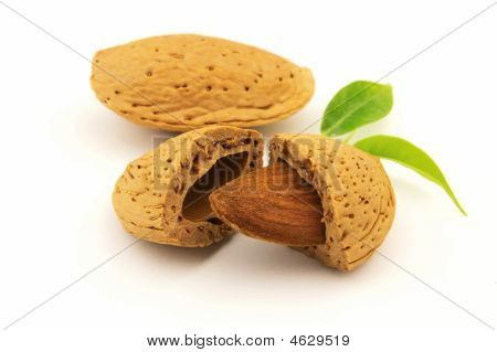 Almond And Kernel