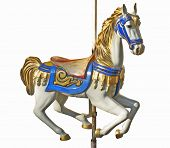 picture of carousel horse  - An isolated horse of a carousel on its tube - JPG