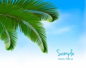 Palm leaves on blue background. Summer holidays concept background. Vector. Vector.