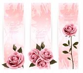 stock photo of rose bud  - Three holiday banners with pink beautiful roses - JPG