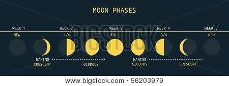 Moon Phases Northern Hemisphere.eps
