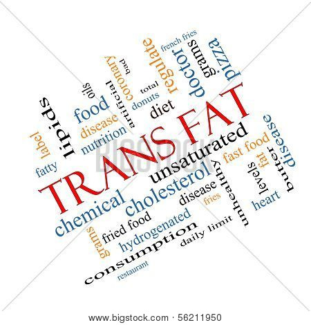 Trans Fat Word Cloud Concept Angled
