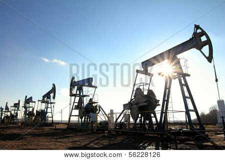 many working oil pumps silhouette in row against sun