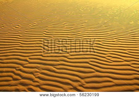 sand in desert with scarab footprints - background