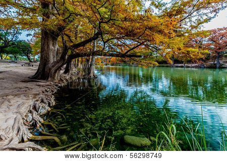Emerald Waters of the Frio River Surrounded with Fall Foliage at Garner State Park, Texas