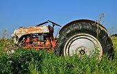 Antique tractor parked in the weed patch