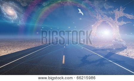 Road leads into desert toward light