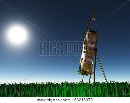Cello on grass