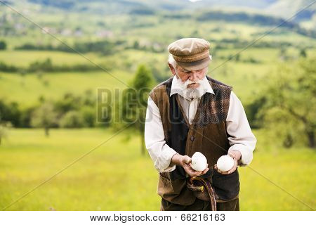 Old farmer on the meadow
