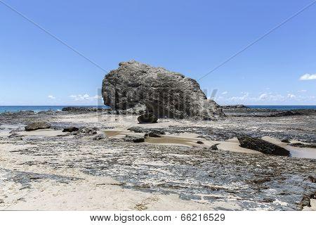 Currumbin Rock, Gold Coast Australia