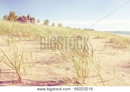 Dune grasses with beach house and lighthouse in the distance