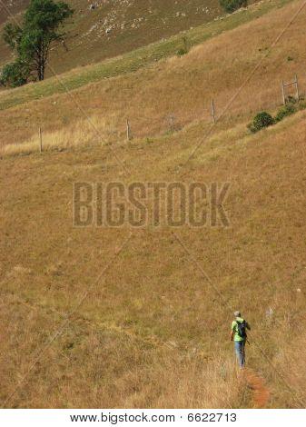 Man Walking On Dirt Path Dead Grass Stick