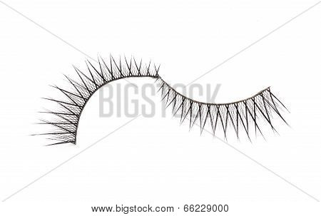 fake false eyelash on white background