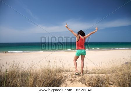 Viva The Beach
