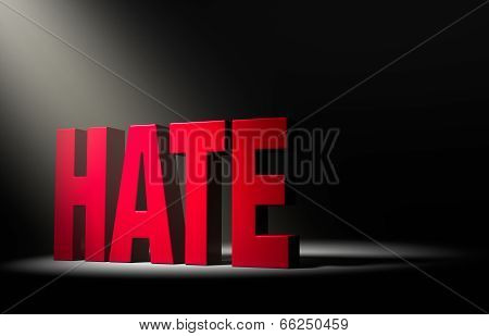 A Spotlight On Hate