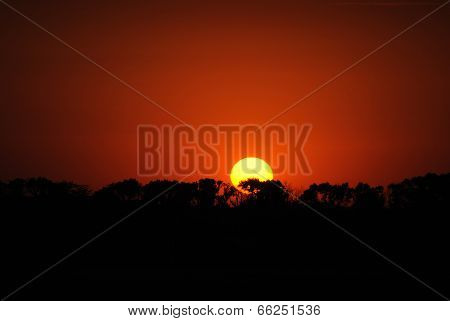 Sunset on a background of red sky.