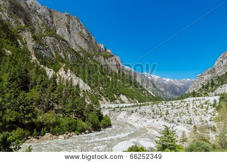 Gangotri Valley