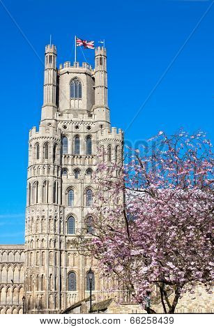 Ely Cathedral In Earlier Spring