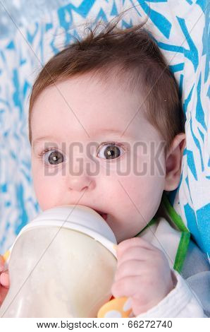 Six-month Girl Drinks Milk From A Bottle