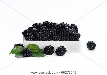 Black bramble berry in a white dish against a white background