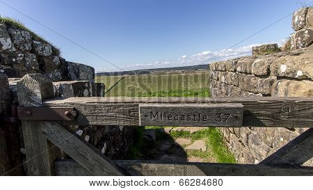 Mile Castle 37 - Hadrian's Wall