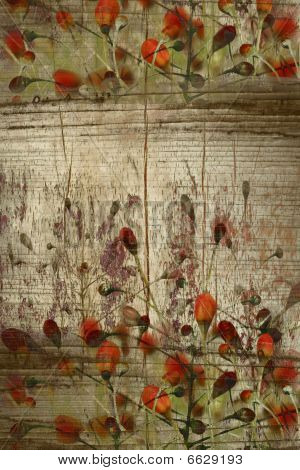 Red Buds On Grunge Wood Background With Banner Space