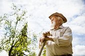 stock photo of hoe  - Old farmer with a hoe is having break from weeding - JPG