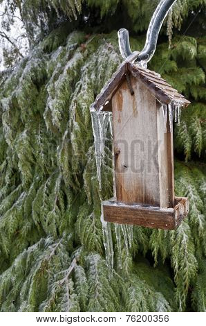 Old Wooden Bird feeder with icicles hanging  by cedar tree