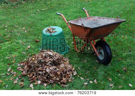 Wheel Barrow And Leafes