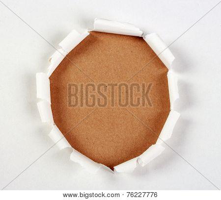 Brown Paper Under Tear Paper