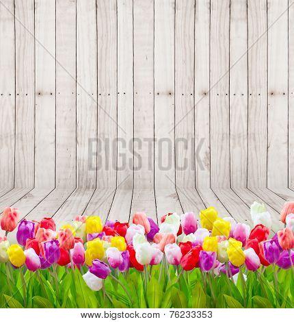 Tulip Flowers  On Wooden Wallpaper.