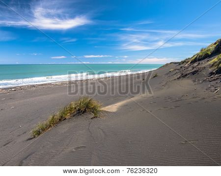Grass On Black Sand Beach Near New Plymouth, New Zealand