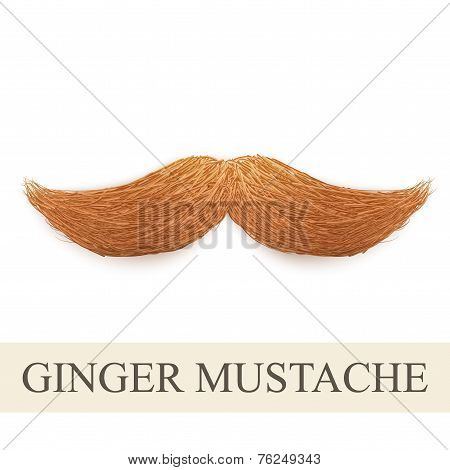 Realistic ginger vintage curly mustache