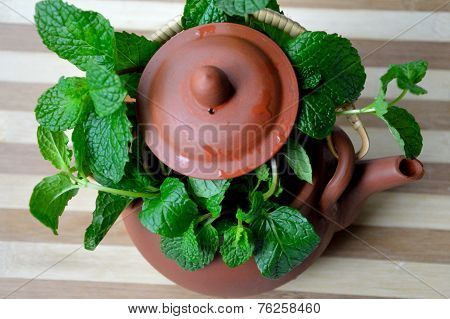 A pot of fresh mint