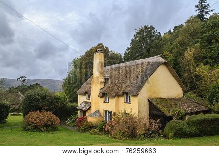 Picturesque Thatched Roof Cottage In Selworthy