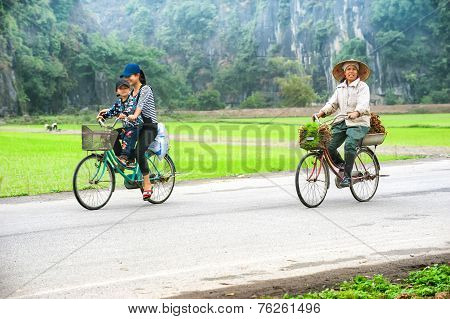Vietnamese Woman At Conical Hat On Bicycle Going For Work At Rice Field