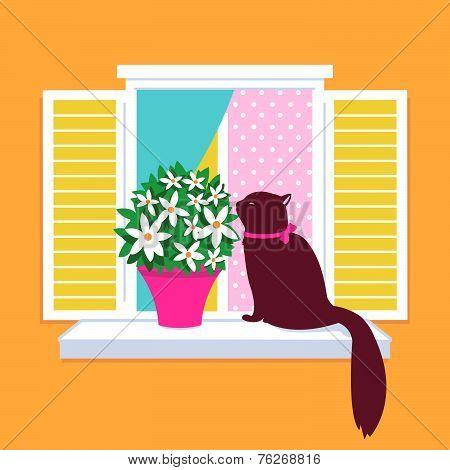 Cat sitting on a window sill