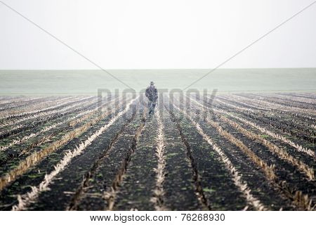 Hunter In Cornfield In The Netherlands