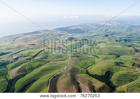 Sugarcane Fields Aerial View